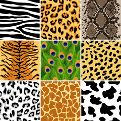 Animal patterns set