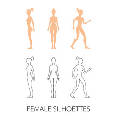 female silhouettes front, back and side. Vector illustration
