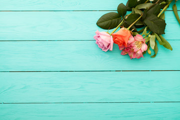 Flowers with copy space on blue wooden background. Top view