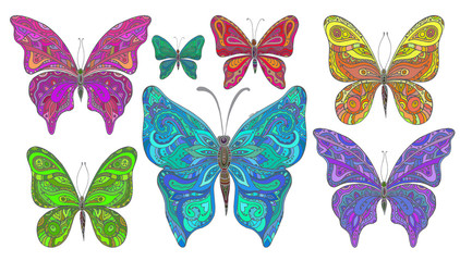 Vector set of colorfull ornamental  butterflies isolated on whit