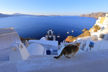 Oia (Ia) village on Santorini island in the morning, Greece