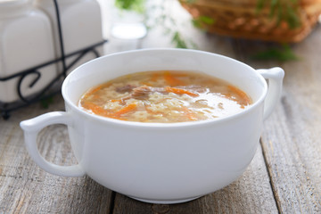 Noodle soup with carrots and poultry
