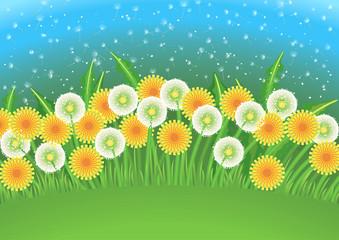 Cartoon background with dandelions