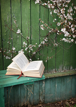 Vertical still life with open poetry book lying on bench