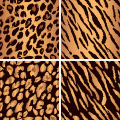 animal skin seamless pattern set. Set leopard print pattern. Set