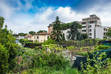 Palazzi popolari residenziali, vegetazione, cielo e nuvole