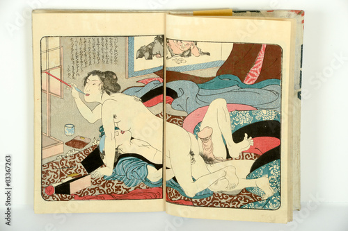 double-japanese-erotic-paintings-shy