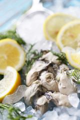 The Fresh Oyster with lemon and coriander