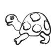 doodle turtle