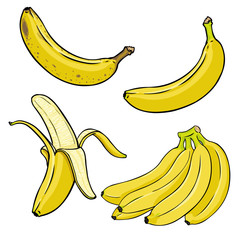 Vector Set of Cartoon Yellow Bananas