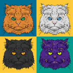 Set of Head of the Persian cat graphics