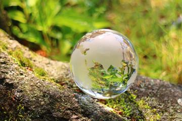自然の中の地球儀