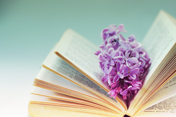 Vintage romantic background with old book, lilac flower, and