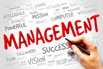 MANAGEMENT word cloud, business concept