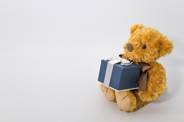 Stuffed toy of the bear