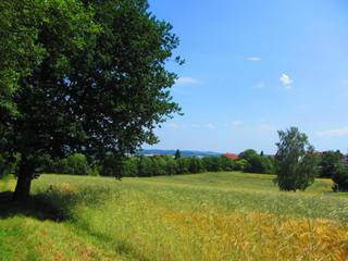 Naherholungsgebiet Zwickau