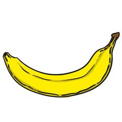 banana hand drawn fruits isolated vector