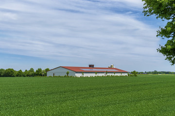Hühnerstall mit Solardach auf dem Feld