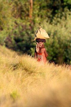 Woman in savannah Madagascar