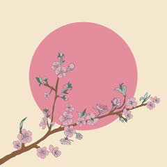 Flowering cherry branch on background of sun. Vintage