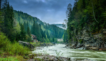 Wall Murals River Carpathian rivers