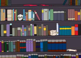 Strange Library Bookshelf