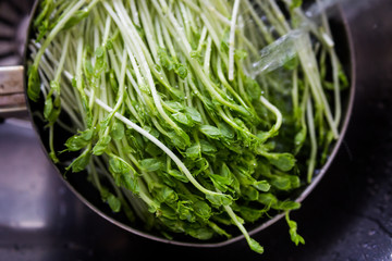 organic veggie