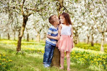Boy and a girl in orchard