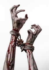 Hands bound,bloody hands, mud, rope, on a white background