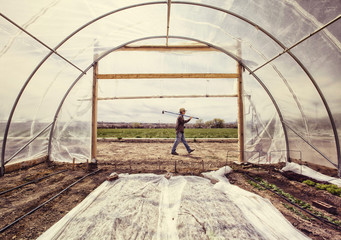 Side view of man passing by polytunnel