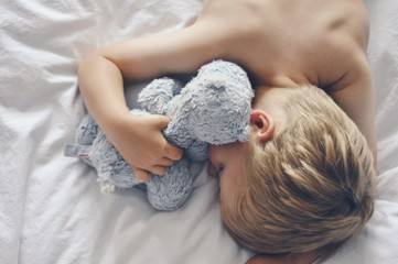 Elevated view of boy sleeping with stuffed animal
