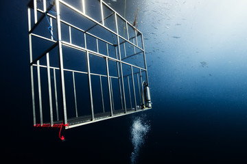 Mexico, Baja, Guadalupe, Bahamas, Empty diving cage under sea