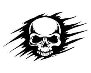 skull skeleton bone logo image vector