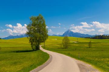 Straße zu den Bergen in Bayern