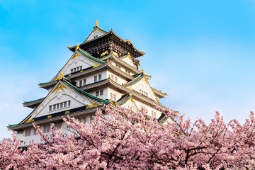 Poster Japan Osaka castle with cherry blossom. Japan, April,spring.