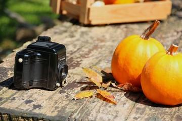 herbst motiv und alte kamera