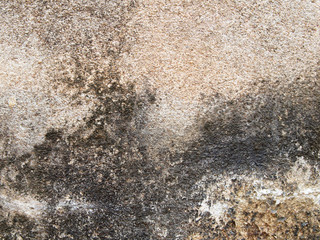 Old wall background, has a fibrous Suitable for background