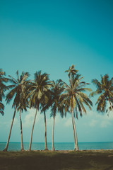 Vintage stylized palm trees on summer tropical shore