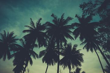 Retro stylized palm tress over dark sky