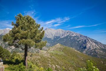 Landschaften auf Korsika
