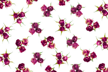Beautiful dried pink roses like as background is isolated on whi