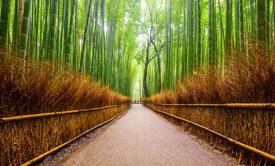 Poster Bambou Path to bamboo forest, Arashiyama, Kyoto, Japan.