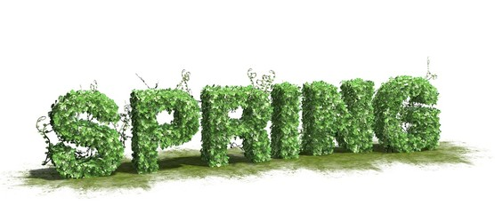 Spring word - from Ivy - isolated on white background