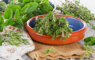 Variety fresh mediterranean herbs.