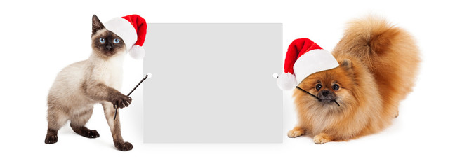 Wall Mural - Christmas Dog and Cat Holding Up Banner