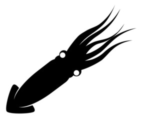 Squid black vector image