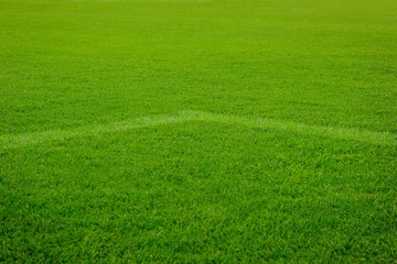 White corner line goal on grass soccer field