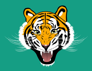 Tiger anger head on green background