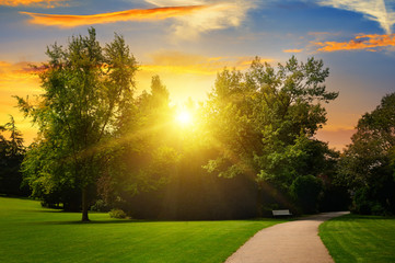 beautiful summer park and sunset