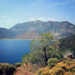View of Adrasan Bay. Pine tree and sea - vintage photo.
